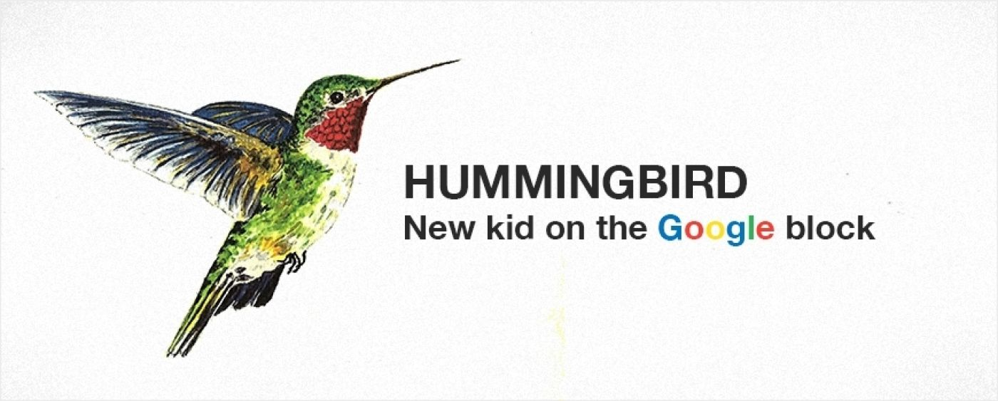 Google new birdie - Hummingbird